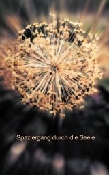 Spaziergang durch die Seele book cover