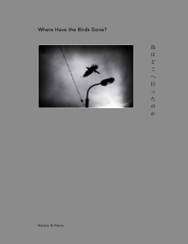 Where Have the Birds Gone? 鳥はどこへ行ったのか book cover
