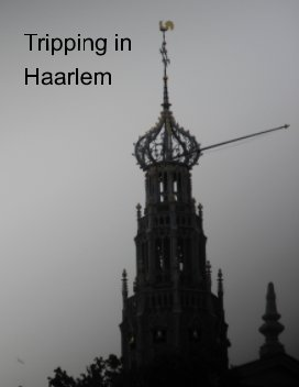 Tripping in Haarlem book cover