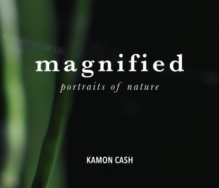 Magnified book cover