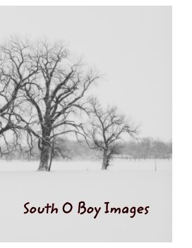 South O Boy Images book cover
