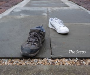 The Steps book cover