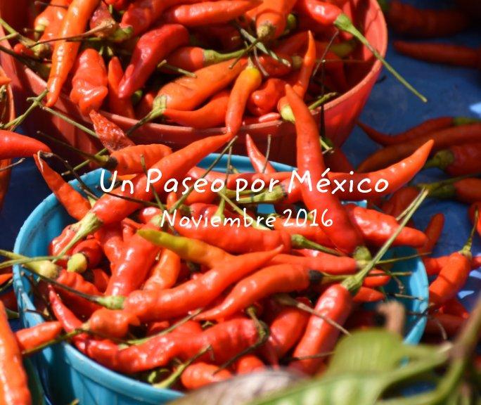 Ver Un Paseo por Mexico - Diciembre 2016 por Mª Luisa Lozano