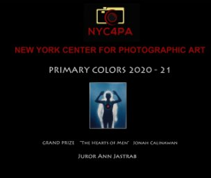 NYC4PA Primary  Colors book cover