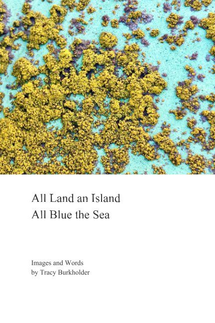 View All Land an Island. All Blue the Sea by Tracy Burkholder
