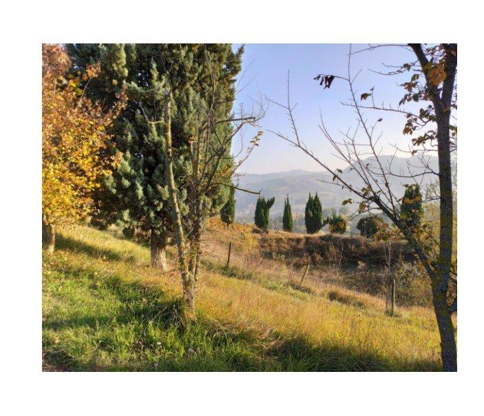 View Tracce di Cammino by Antonio Lorenzon