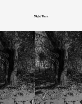 Night Time book cover