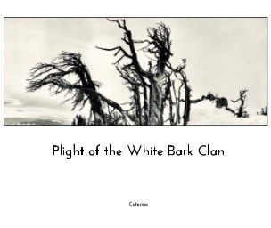 The Plight of the White Bark Clan book cover
