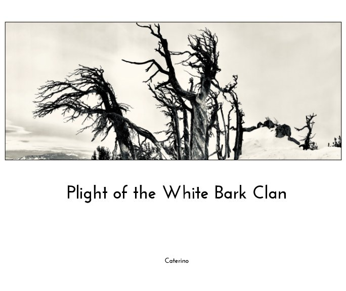 View The Plight of the White Bark Clan by Phil Caterino