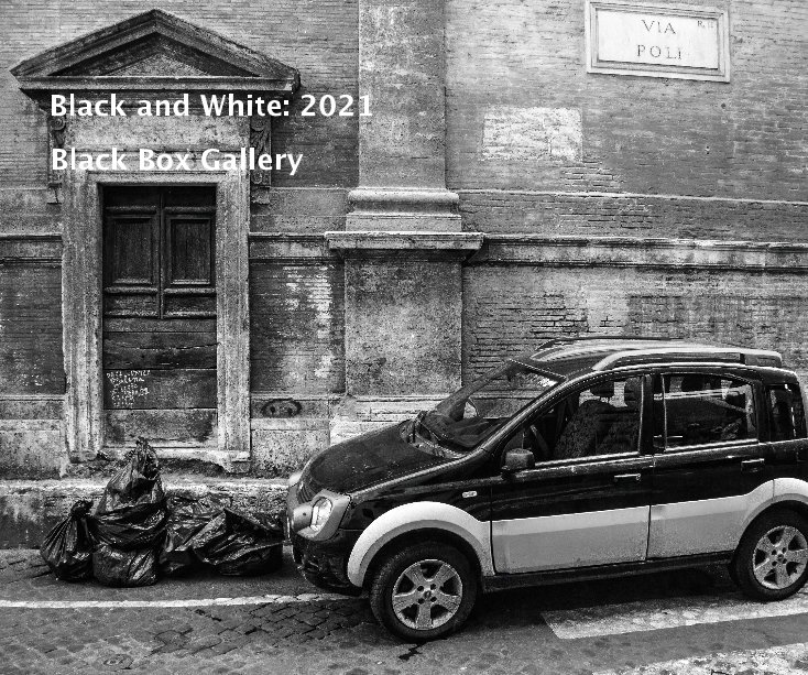 View Black and White: 2021 by Black Box Gallery