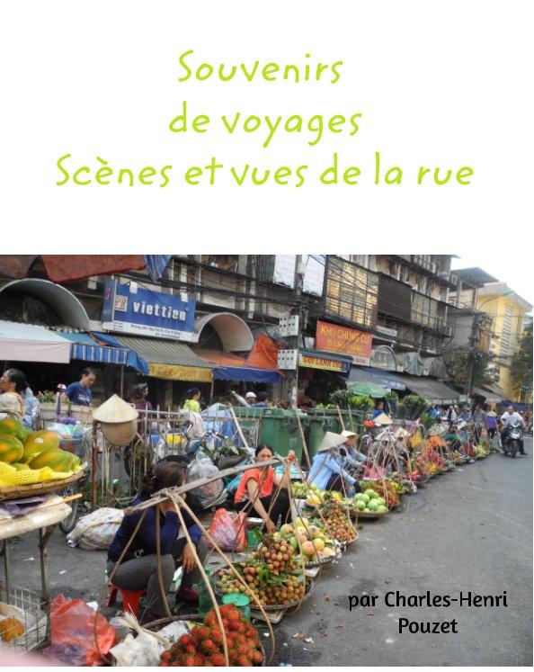 View Souvenirs de voyages by Charles-Henri Pouzet