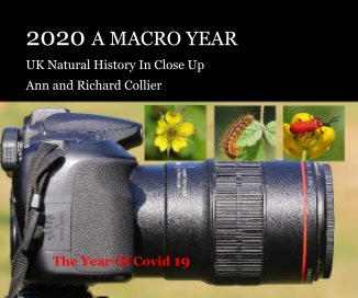 2020 A Macro Year book cover