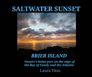 Saltwater Sunset book cover