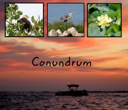 Conundrum book cover