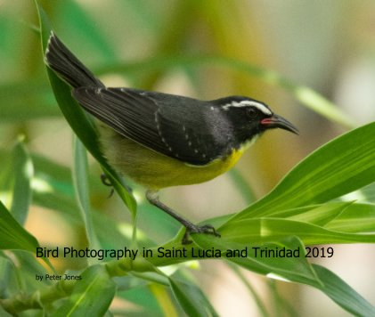 Bird Photography in Saint Lucia and Trinidad 2019 book cover