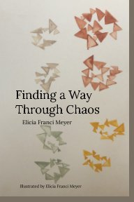 Finding a Way Through Chaos book cover