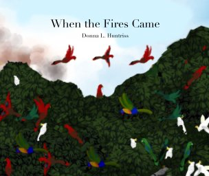 When the Fires Came book cover