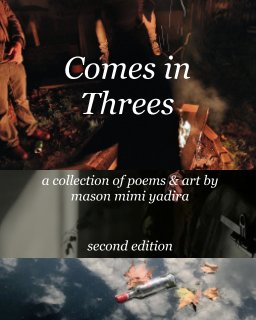 Comes in Threes book cover