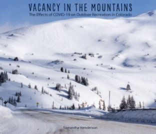 Vacancy in the Mountains book cover