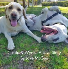Cassie and Wyatt book cover