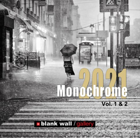 View Monochrome 2021 Vol. 1 - 2 by Blank Wall Gallery