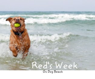 Red's Week on Dog Beach book cover