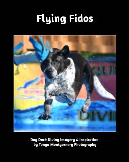Flying Fido's book cover