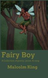 Fairy Boy book cover