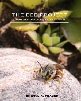 The Bee Project book cover