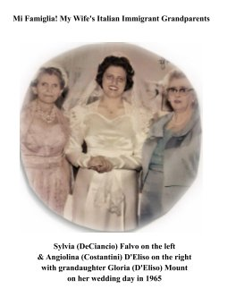 My Wife's Italian Immigrant Grandparents: book cover