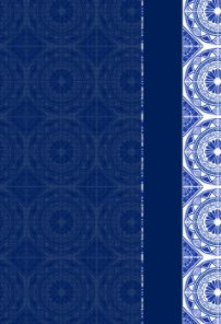 (Revised) Fancy Blue Print Password Notebook book cover