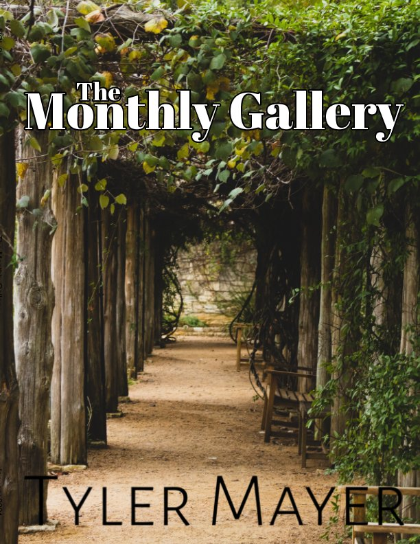 View The Monthly Gallery VOL.2 by Tyler Mayer