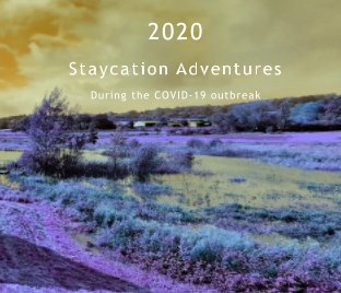 2020 Staycation Adventures book cover
