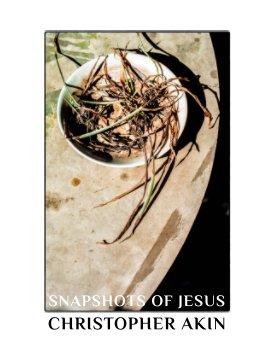 Snapshots of Jesus book cover