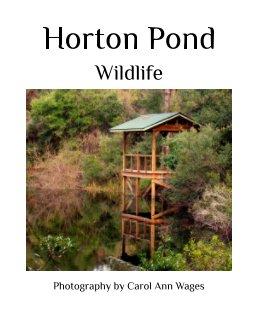 Horton Pond book cover