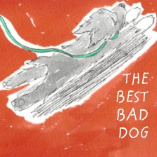 Good Bad Dog book cover