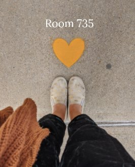 Room 735 book cover