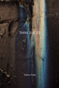 Thin Slices book cover