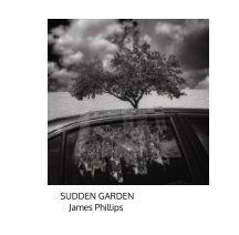Sudden Garden book cover