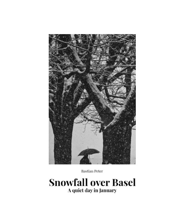 View Snowfall over Basel by Bastian Peter