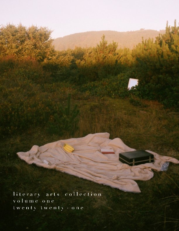View Literary Arts Collection: Volume One by Zoe Stern Stillinger