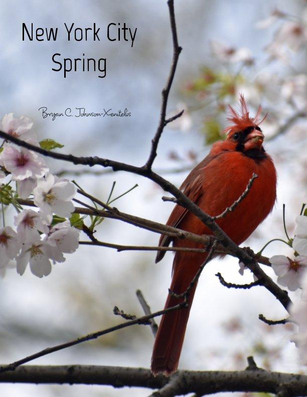 Bekijk New York City Spring op Bryan C. Johnson-Xenitelis