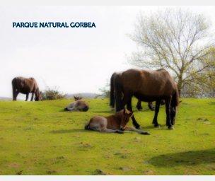 Parque Natural del Gorbea book cover