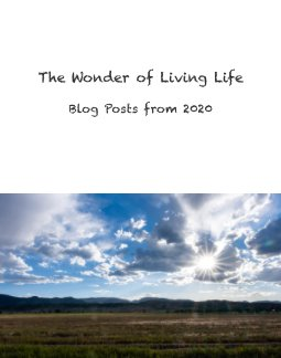 The Wonder of Living Life book cover