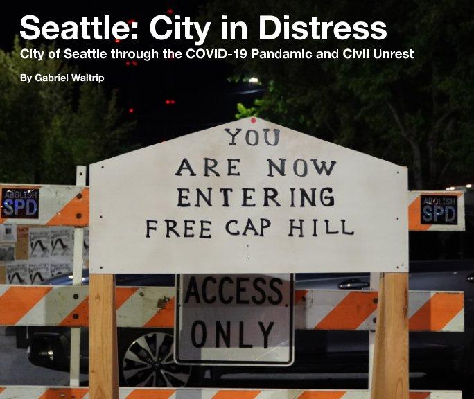 View Seattle City in Distress by Gabriel Waltrip
