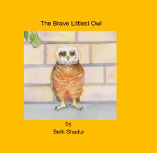 The Brave Littlest Owl book cover