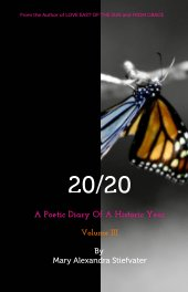 20/20 (Volume III) book cover