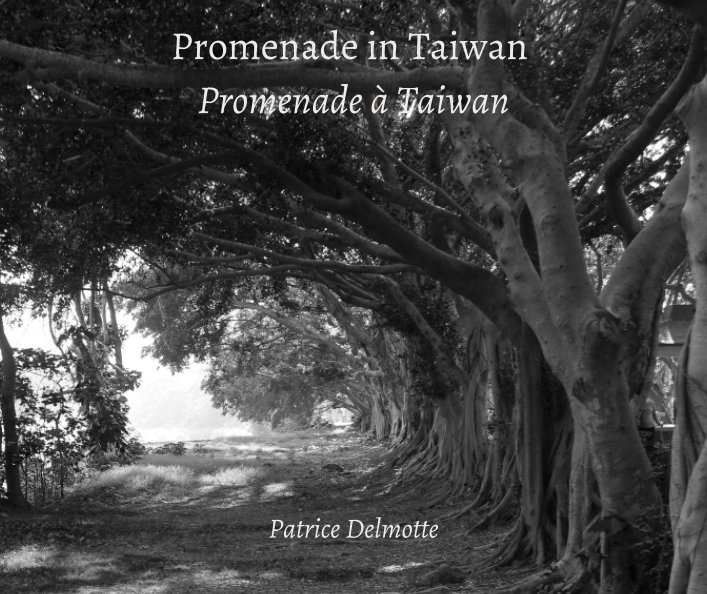View Promenade in Taiwan - THE SOUL OF ORIENT 20x25cm -  few steps around my home by Patrice Delmotte