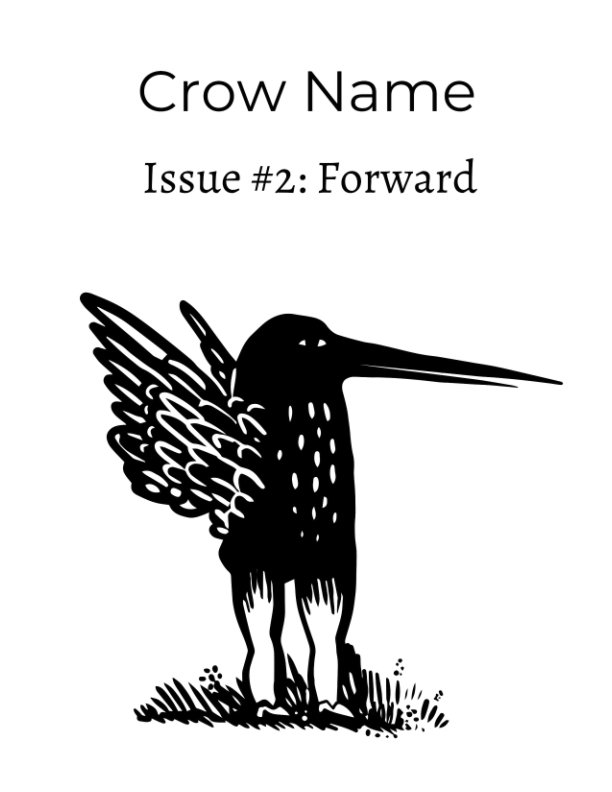 View Crow Name Issue 2 by Editor Gail Bello Meagan Jones
