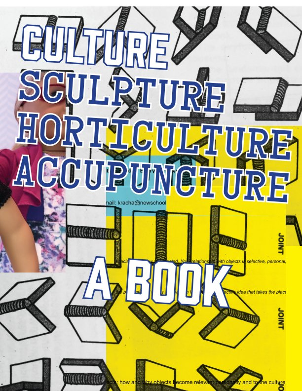 View Culture, a book by Critical Studio Spring 2021
